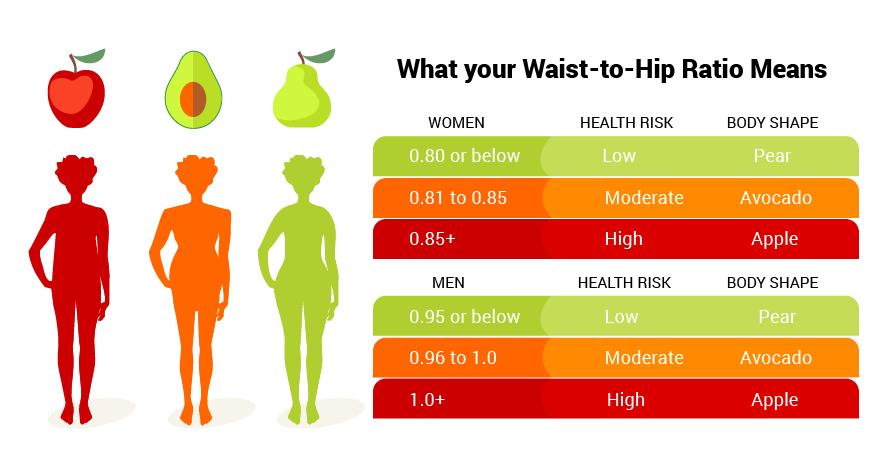 waisthip